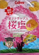s081126Sakurashio