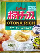 s120907OtonaRichSourCreamOnion