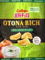 s130816OtonaRichSourcreamOnion