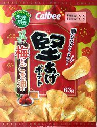 170105Kataage-UmetoGomaabura1