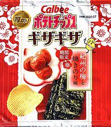 2001GizagizaKishuUmeYakinori1