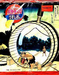2007UsushioSumidaA1