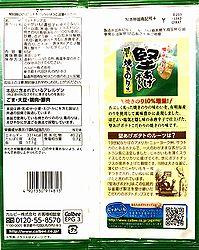 2009KataageYakinori2
